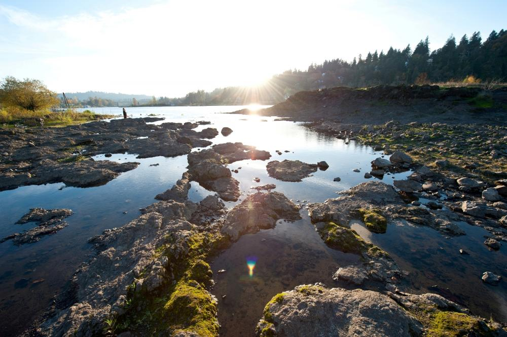 Image result for Milwaukie (Or